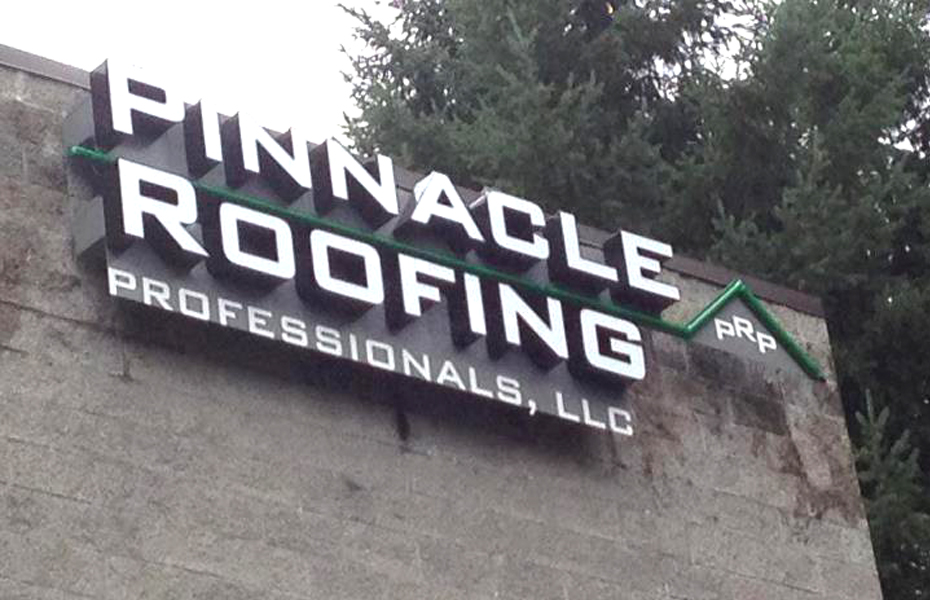 pinnacle roofing professionals
