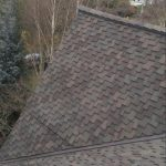Seattle Presidential TL Roof Project