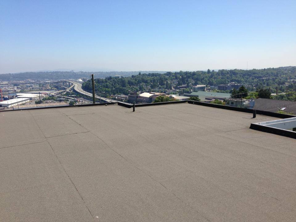 Torchdown Roofing Pinnacle Roofing Professionals Llc
