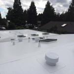 IB pvc roof