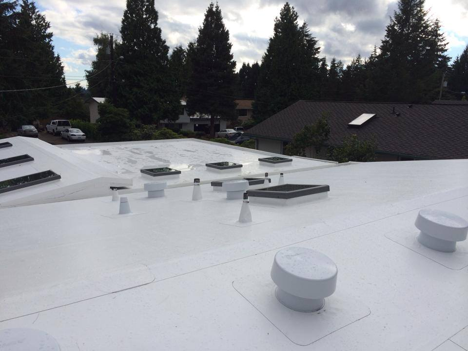 Ib Pvc Roof Systems Pinnacle Roofing Professionals