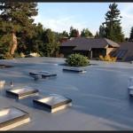 Hunts_Point-PVC_roof