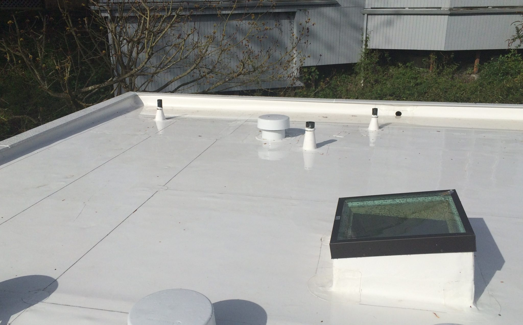 Seattle Pvc Flat Roof Pinnacle Roofing Professioanls Llc
