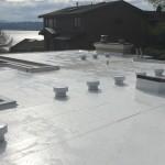 seattle pvc flat roof