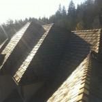 Issaquah Shake Roof